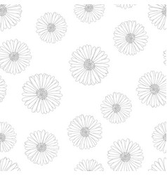 aster daisy outline seamless on white background vector image