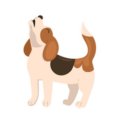 Beagle puppy howls isolate on a white background vector