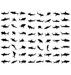 Black shark silhouettes vector