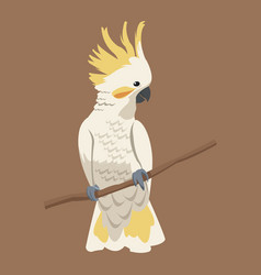 Cockatoo bird exotic branch vector