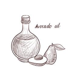 Drawing avocado oil vector