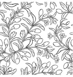 Goji seamless pattern vector