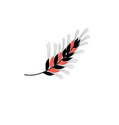 icon ear wheat vector image