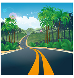 road through the jungle vector image