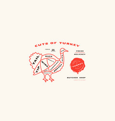 stock turkey cuts diagram in thin line style vector image