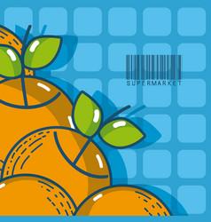 Sweet oranges super market products vector