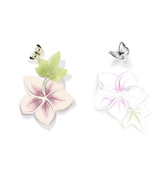 Two flower whith butterfly vector