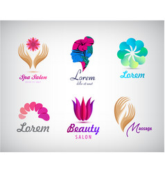 set of beauty salon massage cosmetics vector image vector image