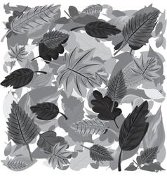 Monochrome Autumn Leaves vector image vector image