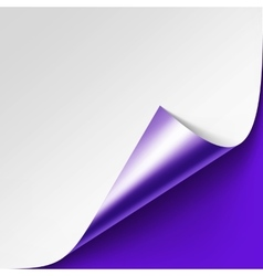 Curled Metalic corner of paper on Background vector image vector image
