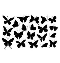 black butterfly silhouettes butterflies icons vector image