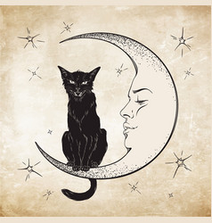 black cat sitting on moon wiccan familiar vector image