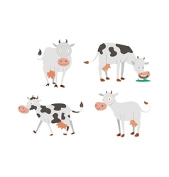 Cartoon cow characters vector
