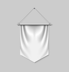 empty 3d pennant template vector image