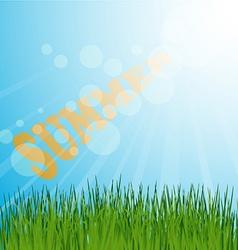 Grass background summer vector image