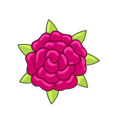 mexican ornamental flower vector image