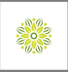 modern flower yoga logo template vector image