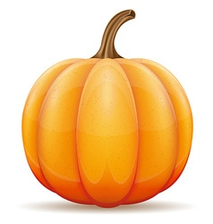 Pumpkin 01 vector