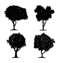 silhouette tree set on white background and icon vector image