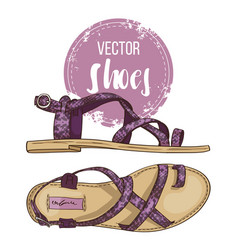 fashion sketch womens shoes vector image vector image