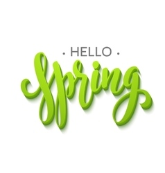 Hello Spring lettering design vector image vector image
