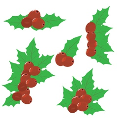 Christmas Mistletoe Set vector