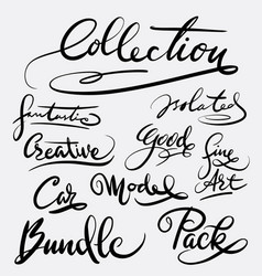 collection and bundle hand written typography vector image