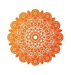 Decorative floral orange mandala ethnicity vector