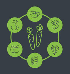 harvest line icons organic farm food vector image