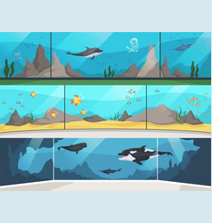 Museum aquarium underwater zoo children vector