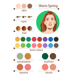 Seasonal color analysis palette for warm spring vector