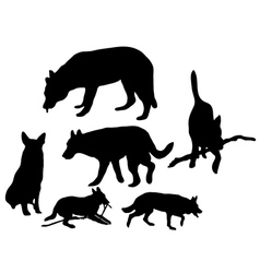 Silhouette of the dogs vector image