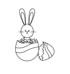 cute easter bunny egg broken decoration vector image vector image