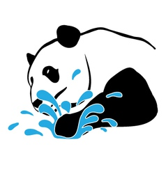panda-splash-pw vector image
