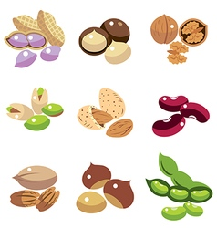 Collection of Beans vector image