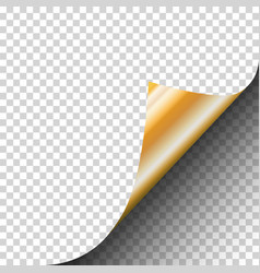 page curl of a blank sheet of paper with gold vector image