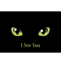 Cat Eyes on Black Background vector image