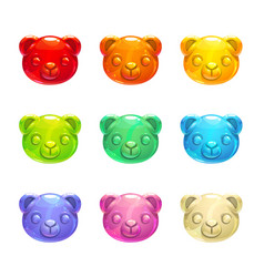 Cute jelly bears faces vector
