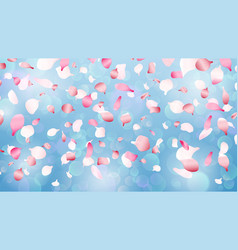 flying petals spring romantic falling petal vector image