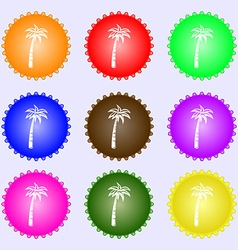 Palm icon sign Big set of colorful diverse vector image