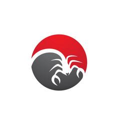 Scorpion logo template vector