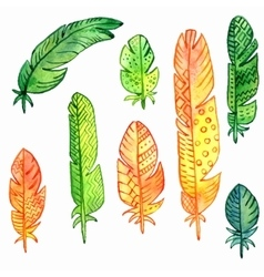 set watercolor feathers vector image