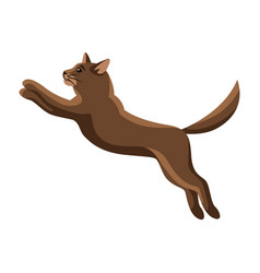 stylized jumping cat vector image