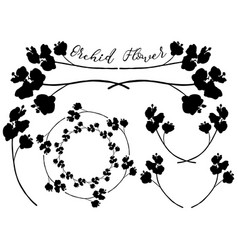 orchid flower shapes dividers frames and vector image vector image