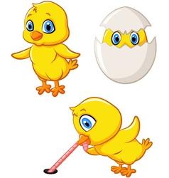 Cartoon happy chick collection set vector image