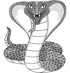 Angry cobra tattoo vector