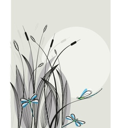 Dragonfly background vector