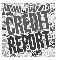 Easy Steps to Rebuild Your Credit after Bankruptcy vector image