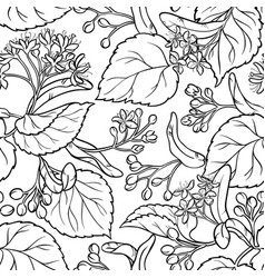 linden seamless pattern vector image