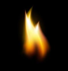 orange flame tongue element vector image